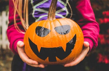 pumpkin-768x449