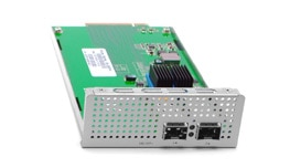2 x 10 GbE SFP+ Interface Module